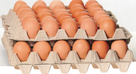 180 Large Size Eggs