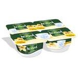 Danone Activia Vanilla cottage cheese 4x125g