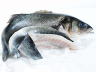 Bass whole wild 1-2kg*